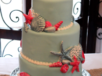 Baby-Blue-Sea-Shell-Cake