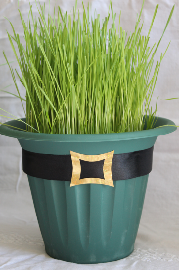 St.-Patrick's-Day-Wheat-Grass-Centerpiece